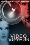 Video Voyeur summary, synopsis, reviews
