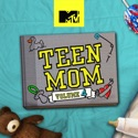 Teen Mom, Vol. 4 watch, hd download