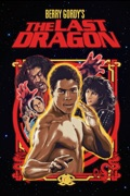 The Last Dragon reviews, watch and download