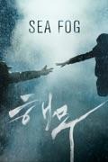 Sea Fog summary, synopsis, reviews