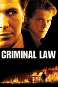 Criminal Law summary, synopsis, reviews