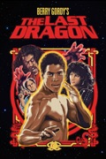 The Last Dragon summary, synopsis, reviews