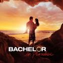 Bachelor in Paradise, Season 2 watch, hd download