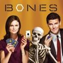 Bones, Season 3 cast, spoilers, episodes, reviews