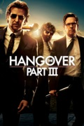 The Hangover Part III summary, synopsis, reviews