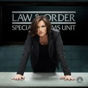 Law & Order: SVU (Special Victims Unit), Season 16 watch, hd download