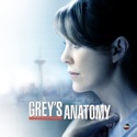 Grey's Anatomy, Season 11 watch, hd download