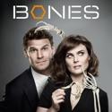 Bones, Season 8 cast, spoilers, episodes, reviews