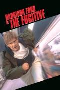 The Fugitive summary, synopsis, reviews