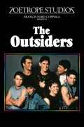 The Outsiders summary, synopsis, reviews